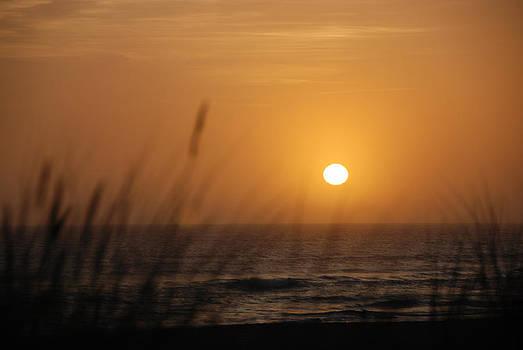 Santa Cruz Sunset by Shane Kelly