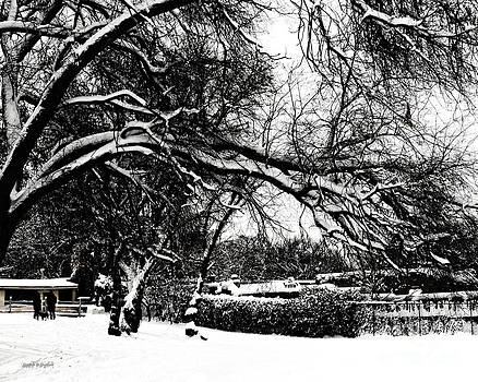 Rhonda Strickland - Santa Fe Snow Day