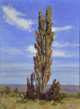 Santa Fe Vista by Scott Harding