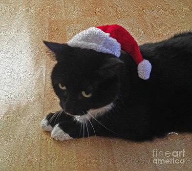 Cheryl Young - Santa Kitty