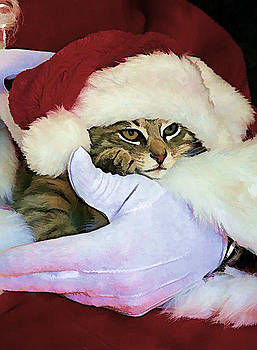 Santa Kitty by Marty Maynard