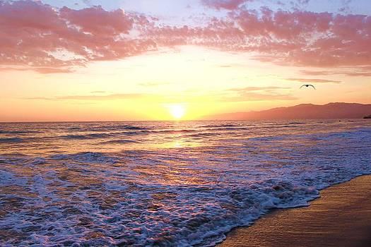 Santa Monica II by Caroline Lomeli