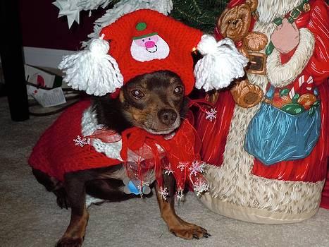 Santa's Helper by Jean Blackmer