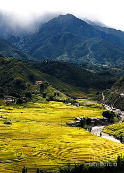 Sapa Vietnam by Paul Frederiksen
