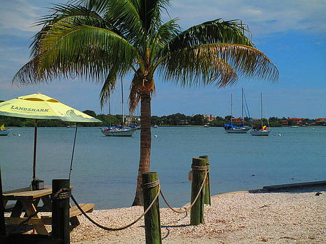 Sarasota Bay at Olearys by Elaine Haakenson