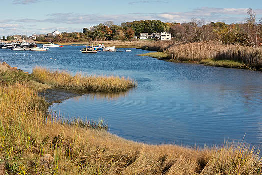 Satuit Brook Scituate Mass by Gail Maloney
