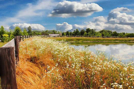 Sauder's Lake by Tom Schmidt