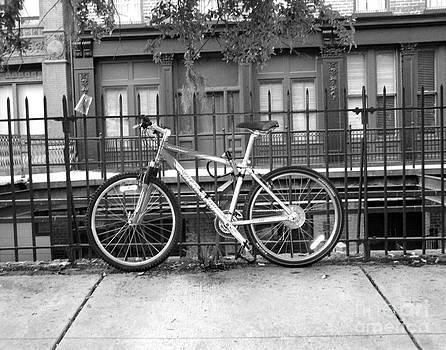 Savannah Bike  by Janet Felts