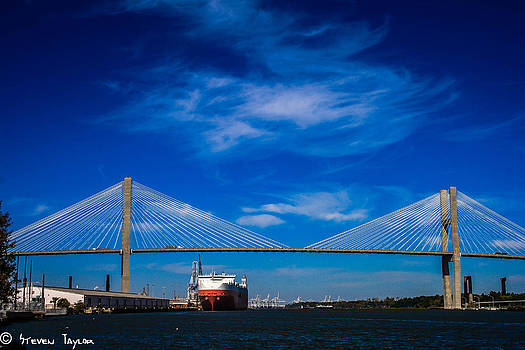 Steven  Taylor - Savannah Bridge