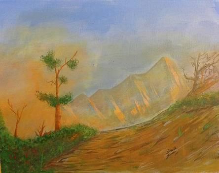 Sawtooth's Evening Glow by Donald Jones