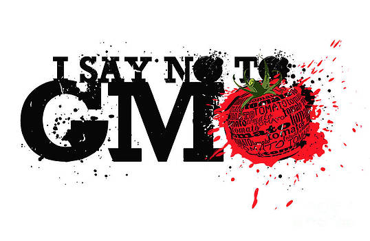 Sassan Filsoof - Say No to GMO graffiti print with tomato and typography