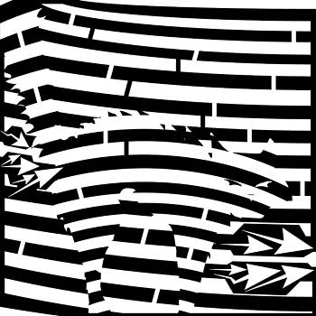 Scared Kitty Maze by Yonatan Frimer Maze Artist