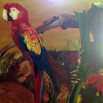 Scarlet Macaw by Paulina Lwowska