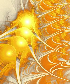 Anastasiya Malakhova - Scattered Sun