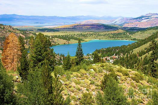 Adam Jewell - Scenic View In June