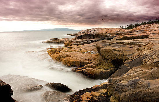 Schoodic Point 6041 by Brent L Ander
