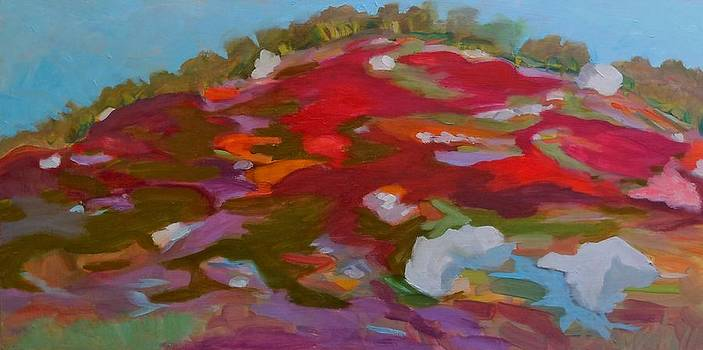 Schoodic Trail Blueberry Hill by Francine Frank