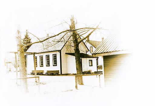 Marcin and Dawid Witukiewicz - School House