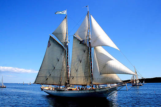 Schooner Mary Day by Colleen Shaw Gleason