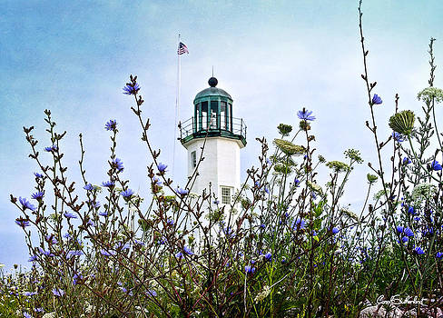 Scituate Lighthouse by Carol Sutherland