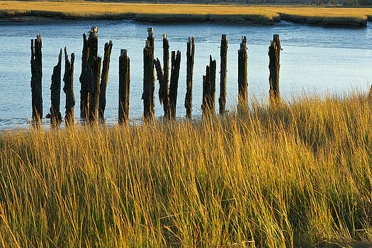 Scituate Wharf Remains by Gail Maloney