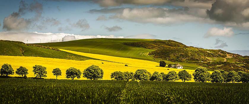 Scottish Landscape 2 by Matthew Bruce