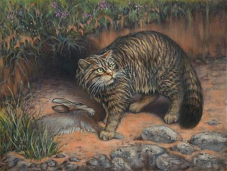 Scottish Wildcat - Last of the Highland Tigers by Cynthia House