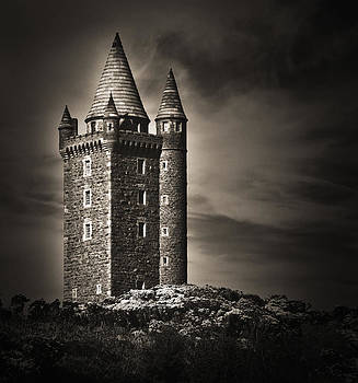 Jane McIlroy - Scrabo Tower Newtownards County Down