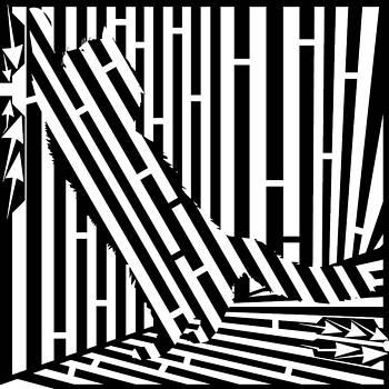 Scratching Cat Maze by Yonatan Frimer Maze Artist