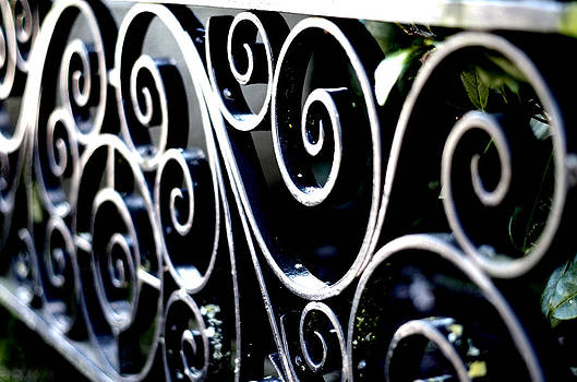 Marilyn Wilson - Government House Gate