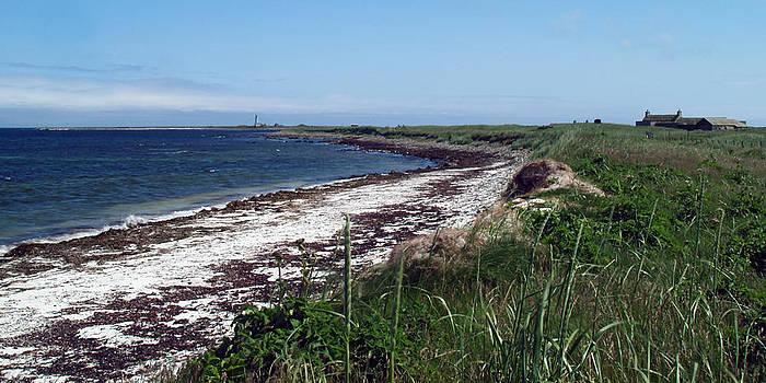 Scuthvie Bay and Start Point by Steve Watson