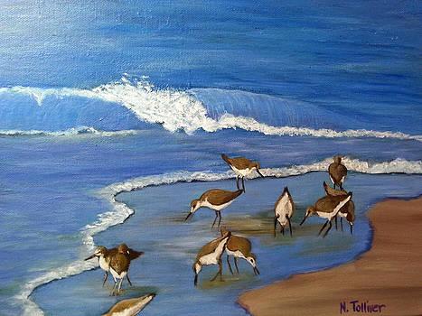 Sea Birds by Norma Tolliver