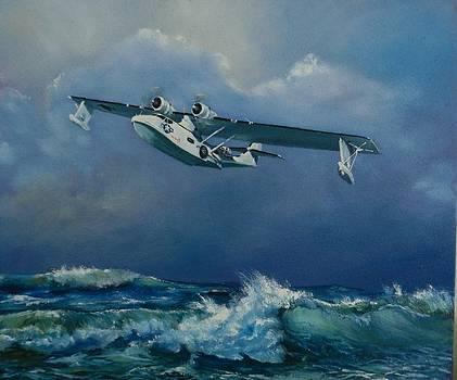 Sea Cat by Robert Teeling