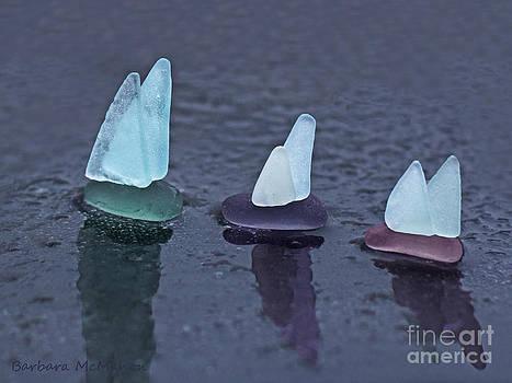 Sea Glass Flotilla by Barbara McMahon