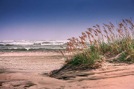 Mary Almond - Sea Oats on Pea Island