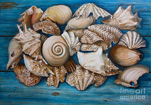 Sea Shells on Wood by Yvonne Ayoub