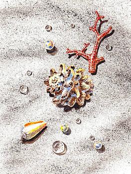 Irina Sztukowski - Sea Shells Pearls Water Drops And Coral