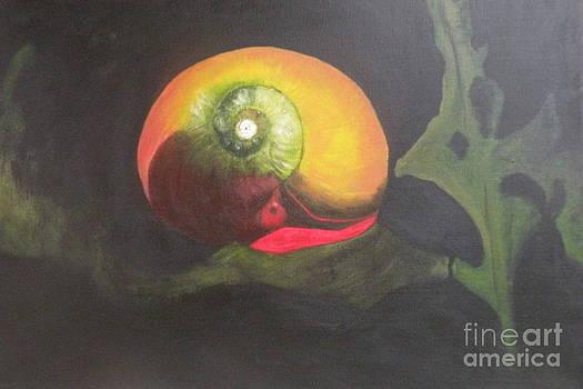 Sea Snail by Carol Northington