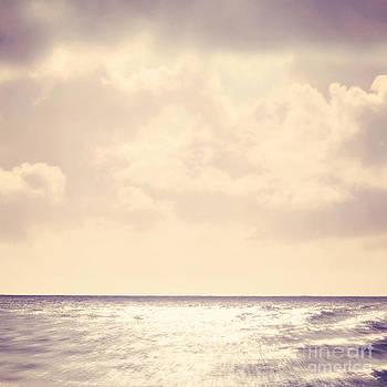 Sea Sparkle by Lyn Randle