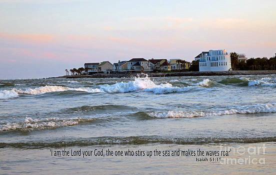 Sea Stirs Waves by Lisa Jones