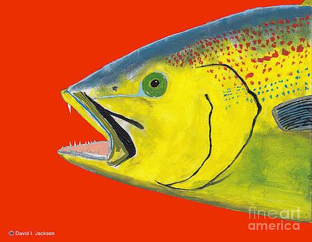 Sea Trout by David Jackson