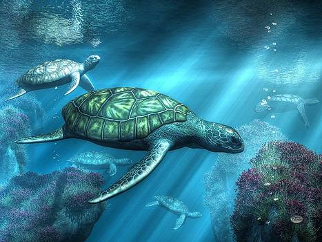 Daniel Eskridge - Sea Turtles