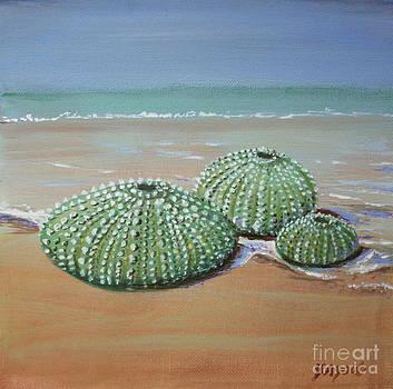 Sea Urchins by Yvonne Ayoub