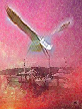 Seabird by Kelly McManus