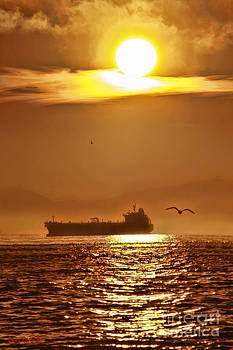 Blake Richards - Seagull And Ship