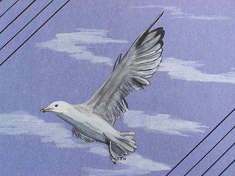 Seagull by Susan Turner Soulis