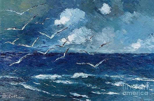 Seagulls over Adriatic Sea by AmaS Art