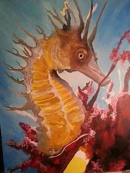 Seahorse by Marisa Salazar