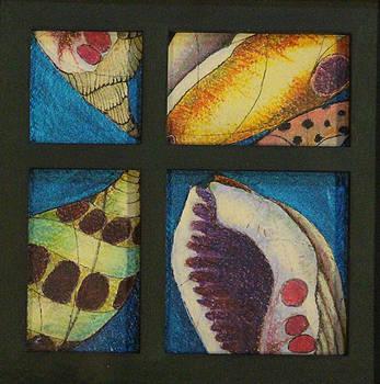 Seashells by the Seashore by J Tanner