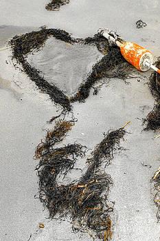 Brenda Giasson - Seaside Love